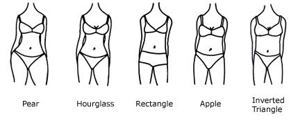 bodytypes2.jpg